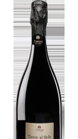 Macellai Vicenza, selezione vini, bottiglia lambrusco terre al sole